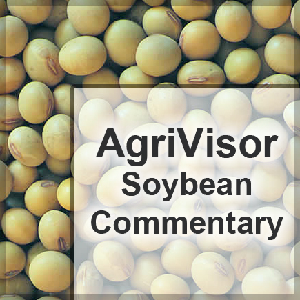 soybean commentary