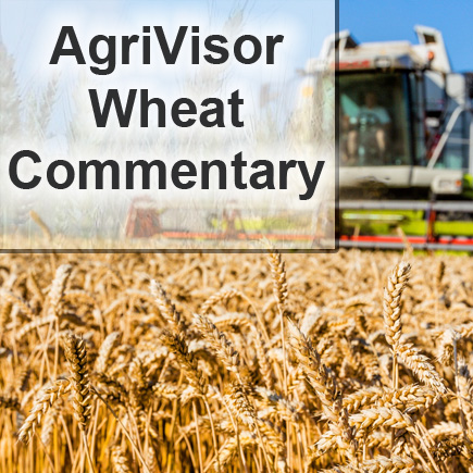 Wheat Commentary