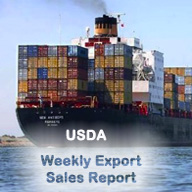 export sales rev 2