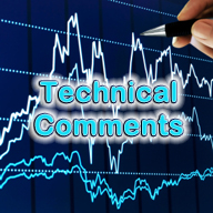technical comments