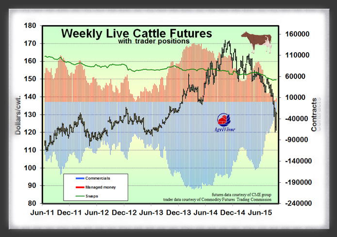 cattle Trader Positions 10_15_15