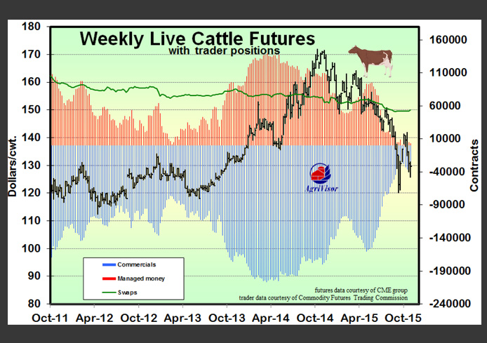 cattle Trader Positions 11_25_15