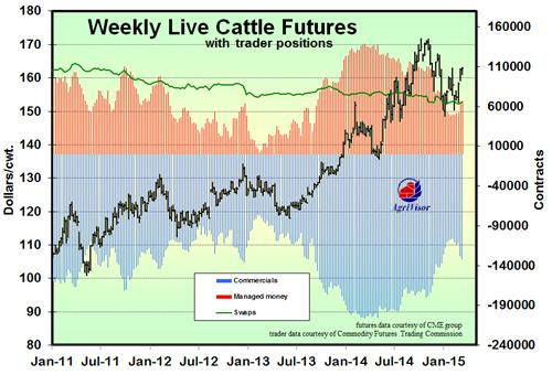 Trader Positions Cattle