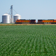 growing field train bin